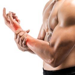 Маленькие мышцы